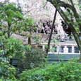 平安神宮の電車