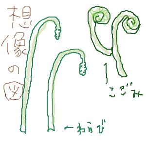 Cocolog_oekaki_2011_06_03_23_03