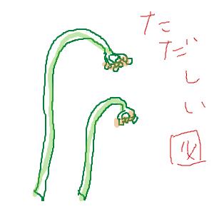 Cocolog_oekaki_2011_06_03_23_11